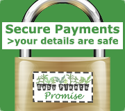 All payments are taken on a secure padlocked server.