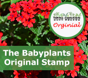 The stamp shows the photo is a babyplants original!
